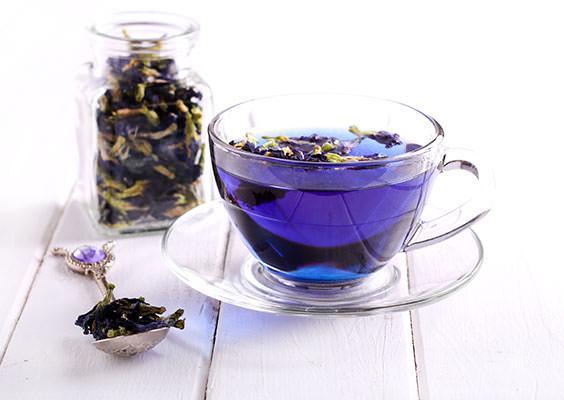 Image result for blue pea flower tea
